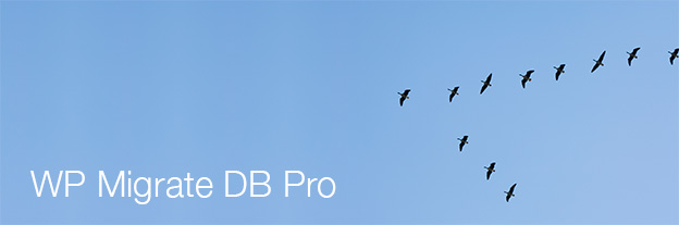wp-migrate-db-pro-banner