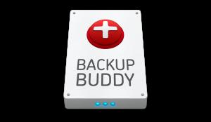 backupbuddy-logo1